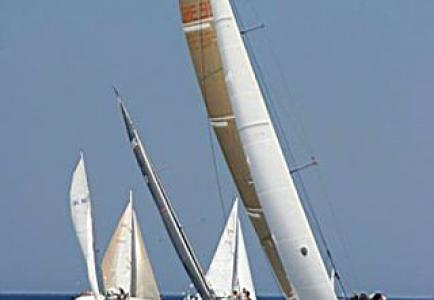 flecherougeregatta2003.jpg