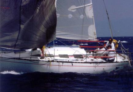 redroseregatta1_2009.jpg