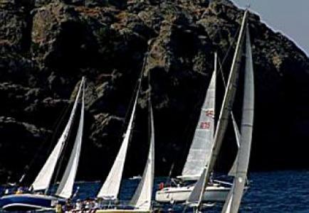 sparilaregatta2003.jpg